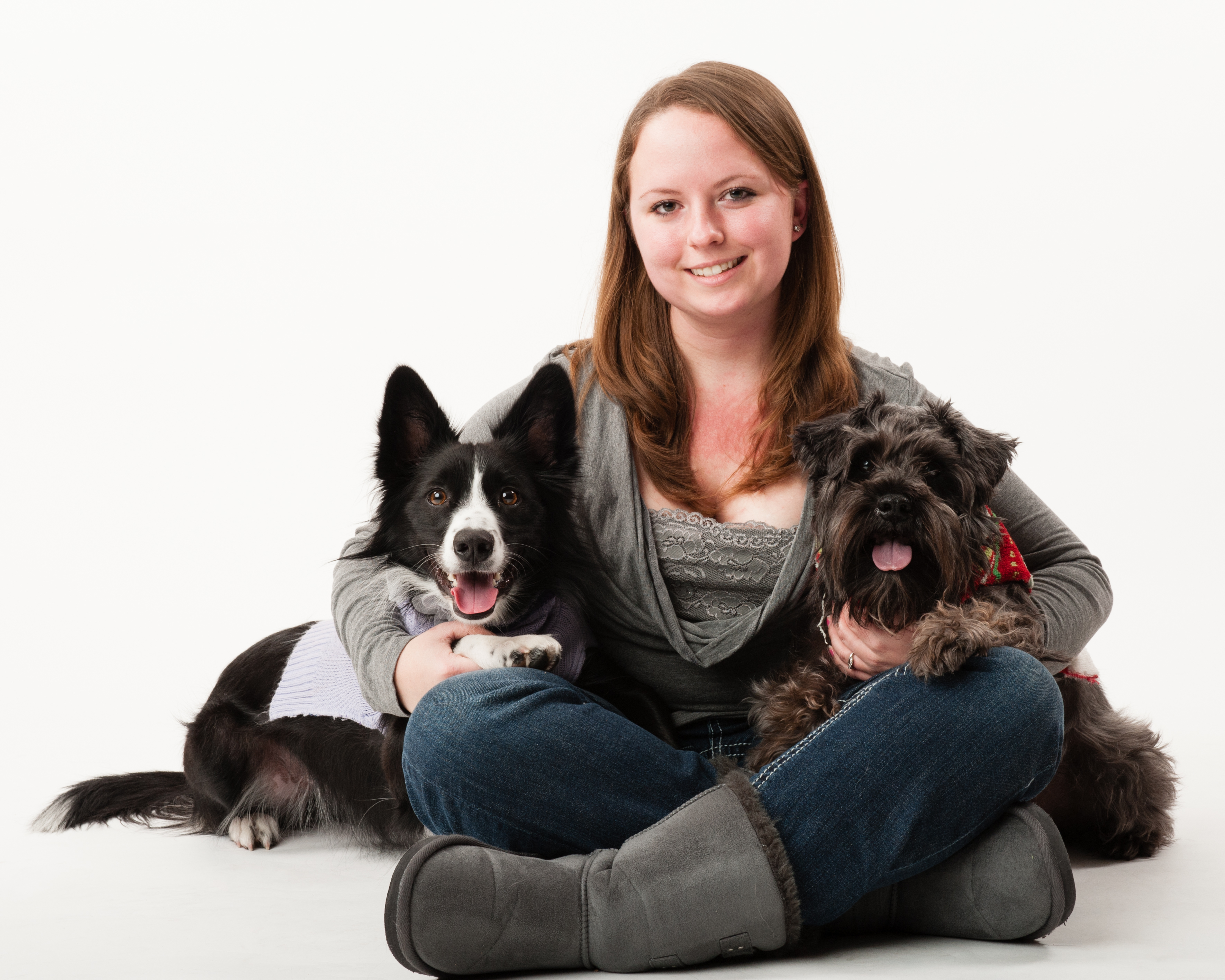 Adopting a Second Dog-- Tips from WestVet 24 Hour Emergency Veterinarian Hospital