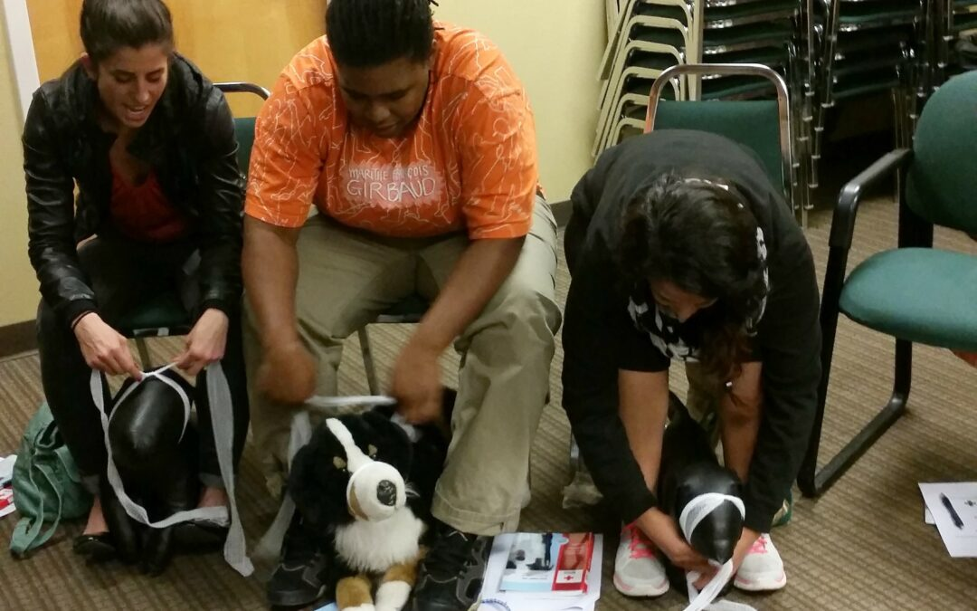 Classes for Pet Owners at WestVet: American Red Cross Dog First Aid