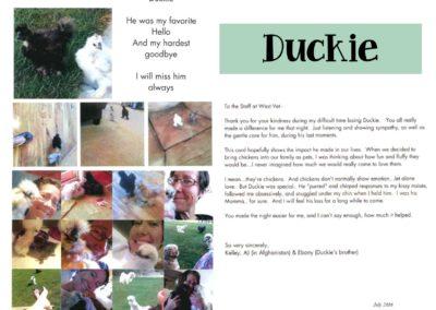 Duckie_Web