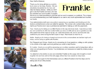 Frankie_web2