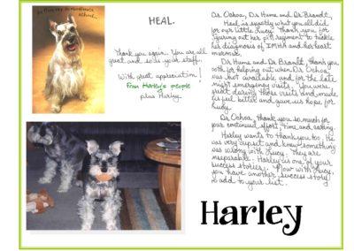 Harley_Turner