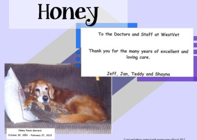 Honey_Gerrard_WEBSITE_CARD