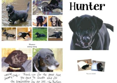 Hunter_Black_Lab_Nov._14