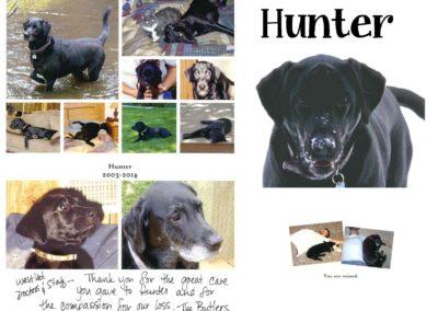 Hunter_Black_Lab_Nov._14