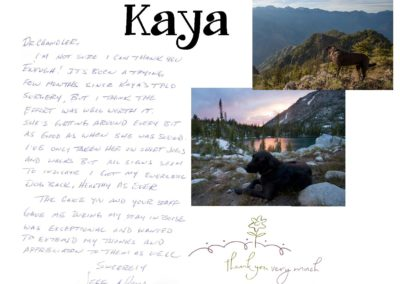 Kaya_Hsu_WEBSITE_CARD
