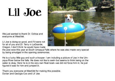 Lil_Joe