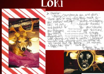 Loki_Foster_WEBSITE_CARD