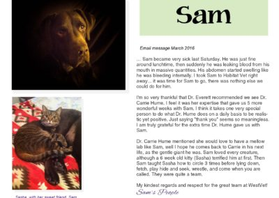 Sam-_email_message