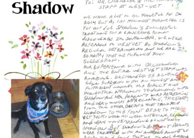 Shadow_Johnson_WEBSITE_CARD