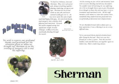 Sherm