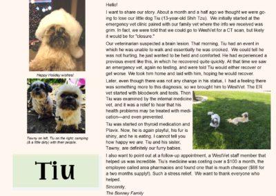 TIU_web