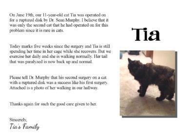 Tia_-_Cat