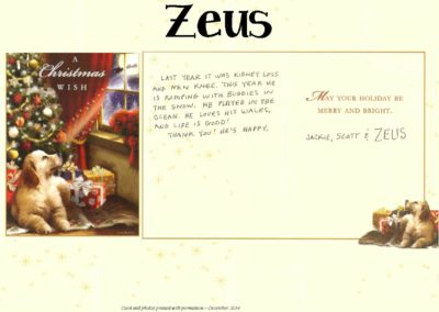 Zeus_Howell_WEBSITE_CARD