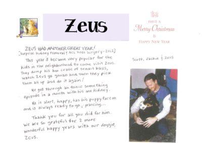 Zeus_Web_2015