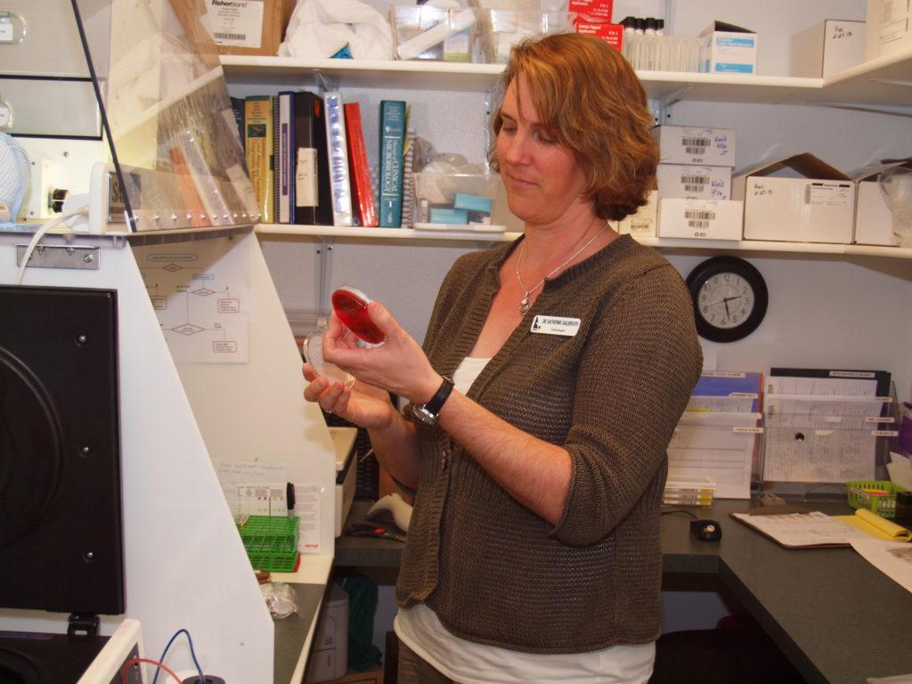 Dr. Katherine Gailbreath, WestVet Anatomic Pathologist