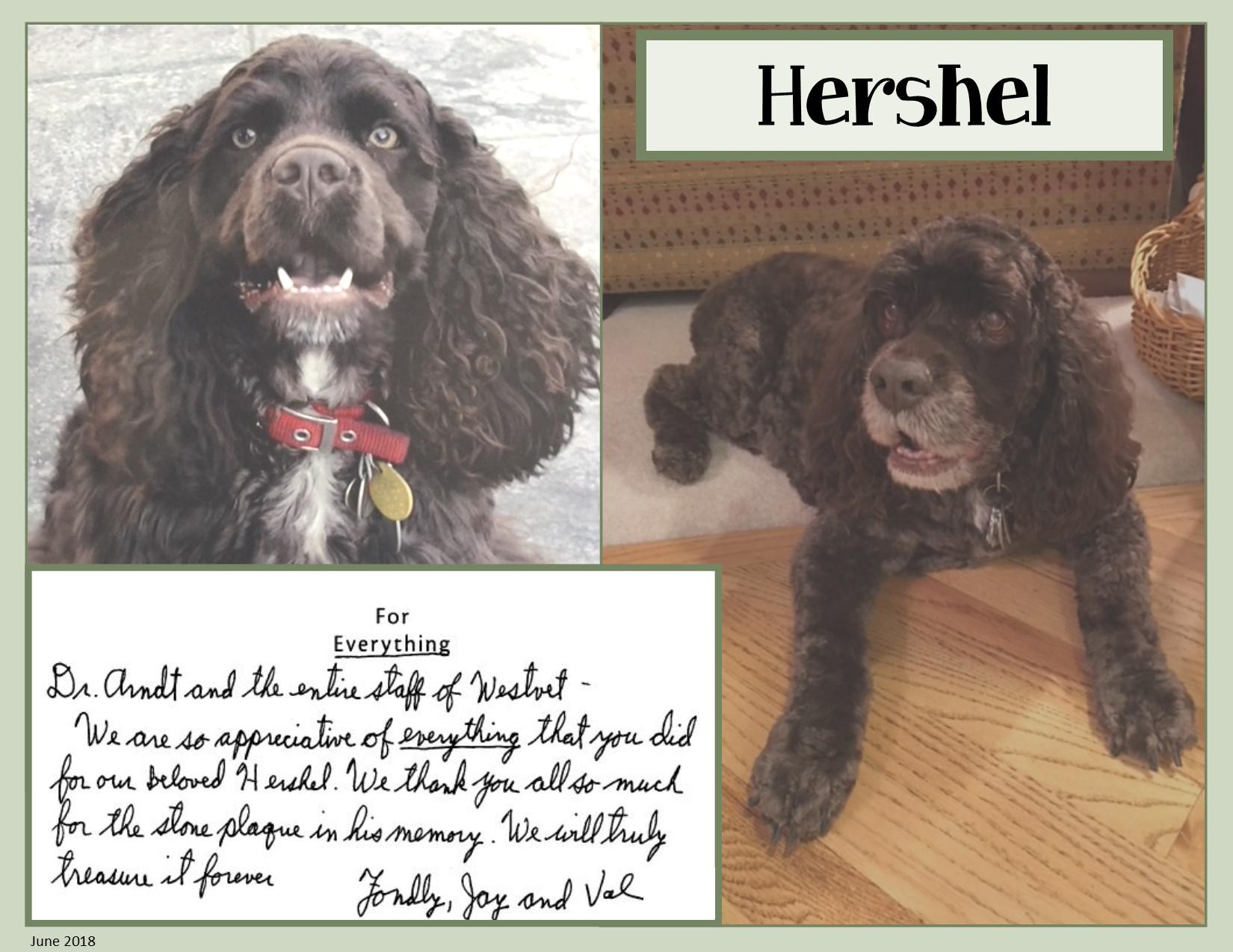 Hershel Pease